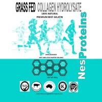 NesProteins Collagen Hydrolysate (450g)