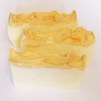 Andrea's Lotions and Potions Vegan Soap