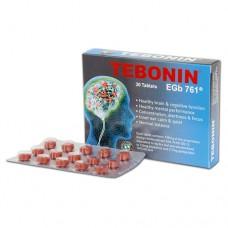 Tebonin EGb761